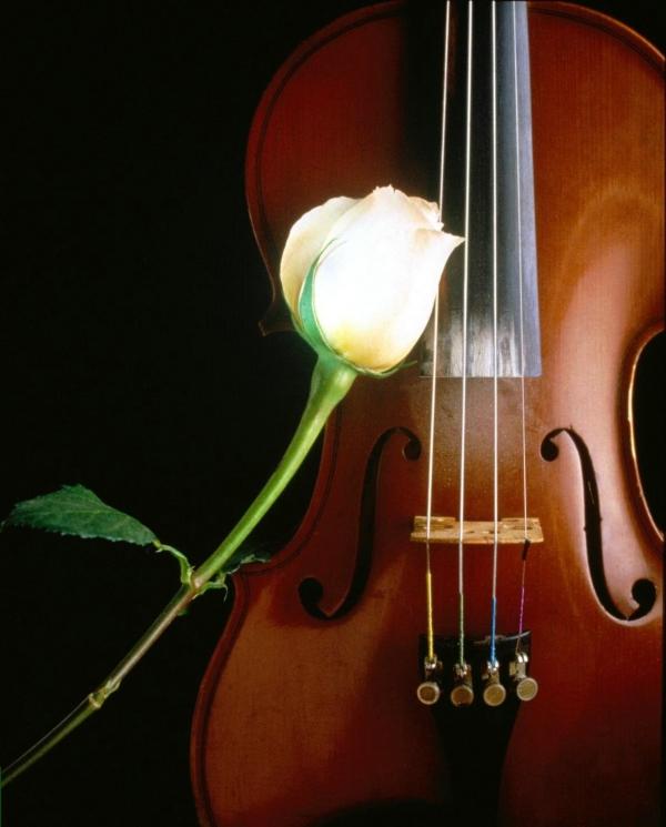 скачать бесплатно мелодии для телефона скрипка