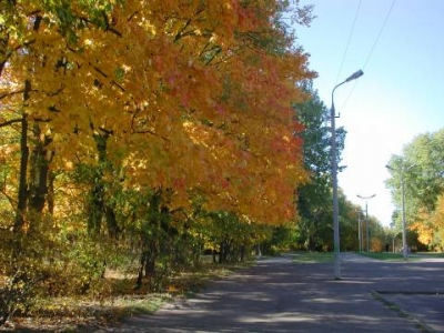 Реадовский парк